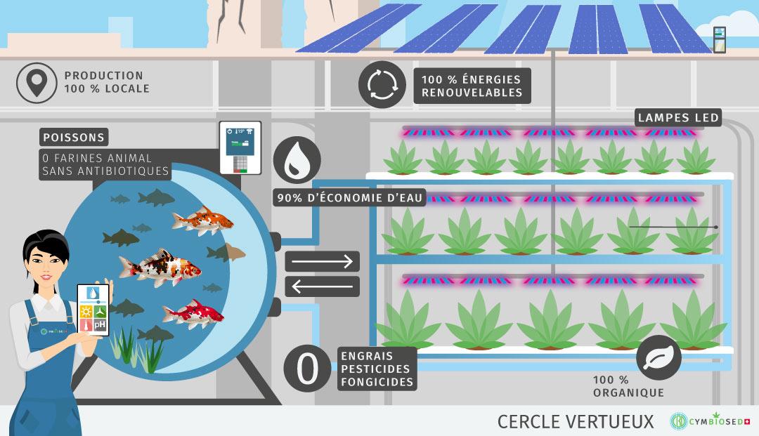 aquaponie-cbd-suisse-euro